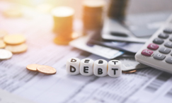 Debt and Total Net Worth Analysis