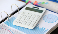 Business Tax Processing Services